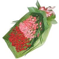 100송이꽃다발